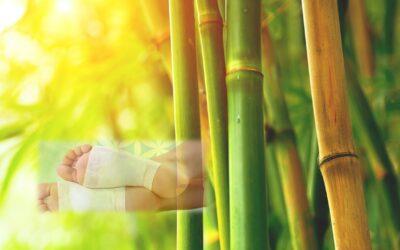 Entgiften und Entschlacken mit Bambus Vitalpflaster